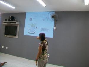 dengue 28 03 14 (5)